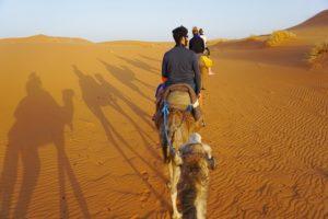 サハラ砂漠ツアーに行ってきたよ。【その模様とか費用とか日程とかいろいろね】