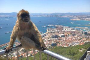 せっかくだからジブラルタルという国にも立ち寄ってみようーー!